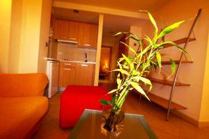 apartamento-202-clase-estandar-imagen-04-apartamentos-centro-granada